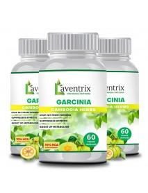 Garcinia Cambogia Herbs-3 Bottle