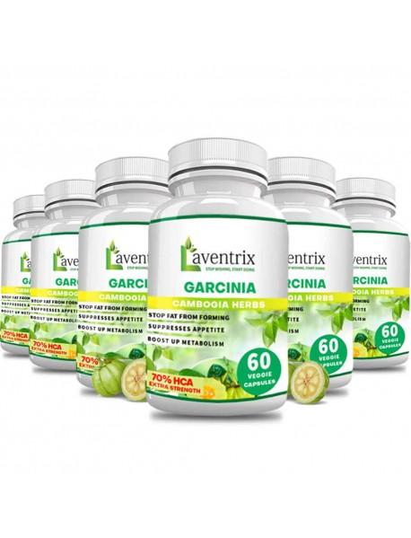 Laventrix Garcinia Cambogia Herbs-6 Bottle